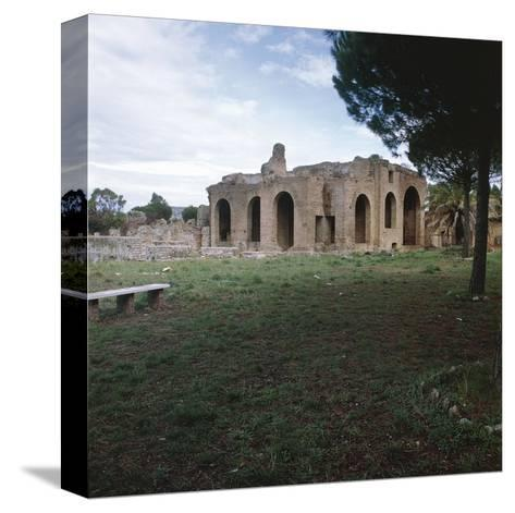 Taurine--Stretched Canvas Print