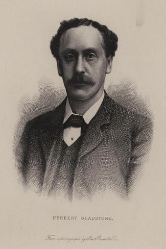Herbert Gladstone, British Politician--Stretched Canvas Print