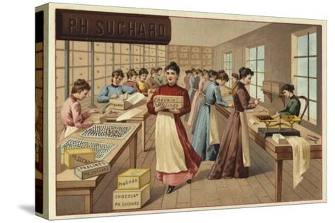 Packing Chocolates in a Factory--Stretched Canvas Print