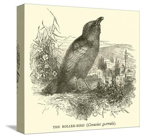 The Roller-Bird, Coracias Garrula--Stretched Canvas Print