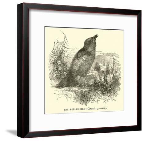 The Roller-Bird, Coracias Garrula--Framed Art Print