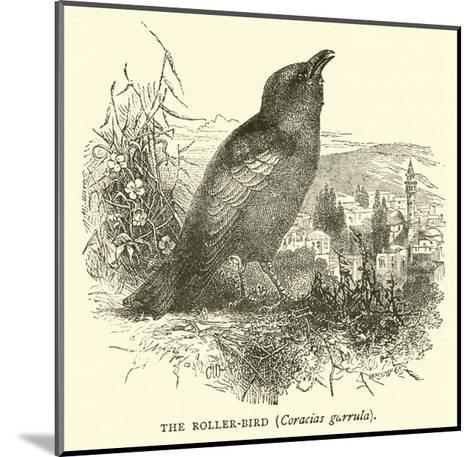 The Roller-Bird, Coracias Garrula--Mounted Giclee Print