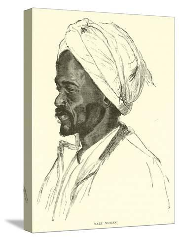 Male Nubian--Stretched Canvas Print