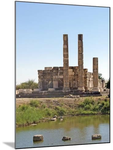 The Temple of Leto, Letoon, Turkey--Mounted Photographic Print