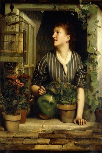 Morning Glories, 1874-Emile Levy-Stretched Canvas Print