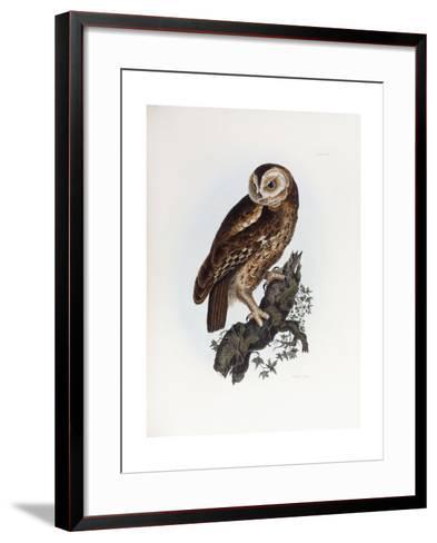 Tawny Owl, 1841-Prideaux John Selby-Framed Art Print
