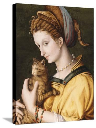 Lady with a Cat, C.1525-30-Francesco Ubertini, Il Bacchiacca-Stretched Canvas Print