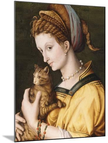 Lady with a Cat, C.1525-30-Francesco Ubertini, Il Bacchiacca-Mounted Giclee Print