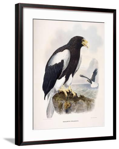 Haliaetus Pelagicus-Daniel Girard Elliot-Framed Art Print