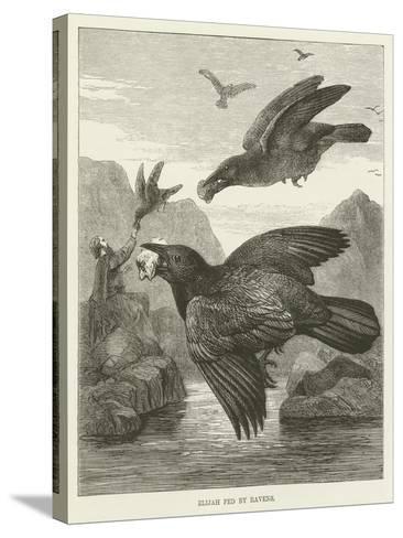 Elijah Fed by Ravens--Stretched Canvas Print