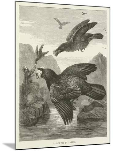Elijah Fed by Ravens--Mounted Giclee Print