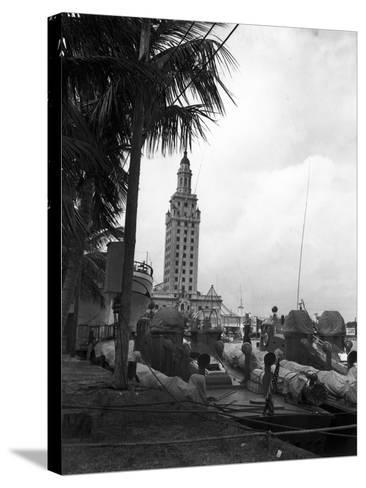 Pt Boats Docked at the Port of Miami--Stretched Canvas Print