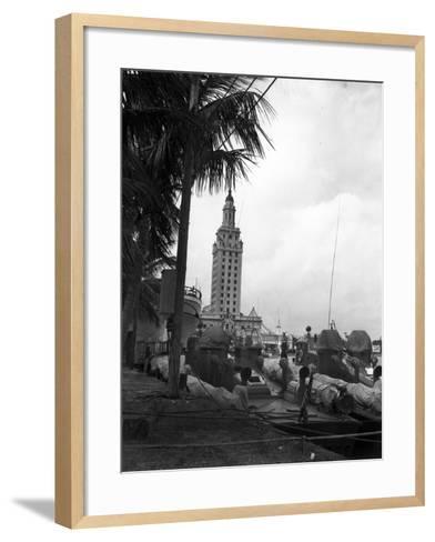 Pt Boats Docked at the Port of Miami--Framed Art Print
