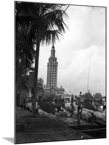 Pt Boats Docked at the Port of Miami--Mounted Photographic Print