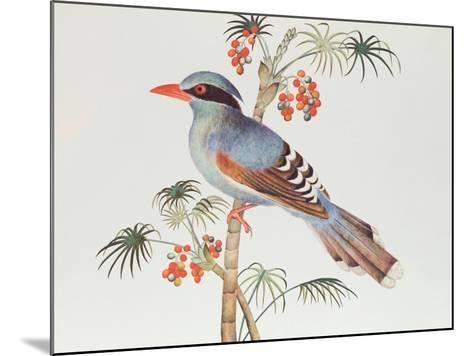 Green Magpie, Ch'Ien-Lung Period--Mounted Giclee Print