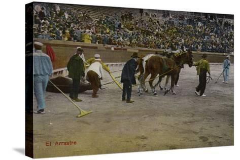 Bullfighting Scene, Spain--Stretched Canvas Print