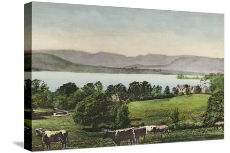 Windermere from Low Wood--Stretched Canvas Print