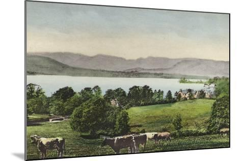 Windermere from Low Wood--Mounted Photographic Print