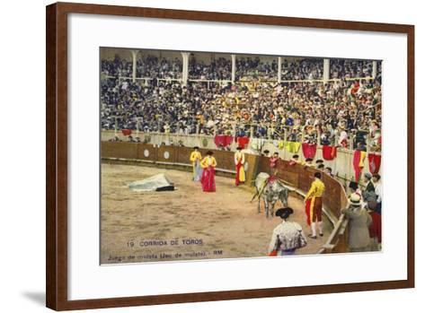 Bull Fight in Spain, Early 20th Century--Framed Art Print