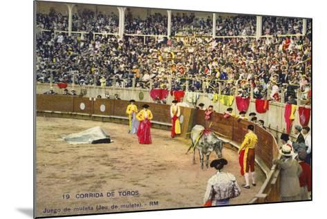 Bull Fight in Spain, Early 20th Century--Mounted Photographic Print
