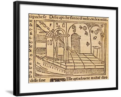 Engraving from De Agricultura Vulgare--Framed Art Print