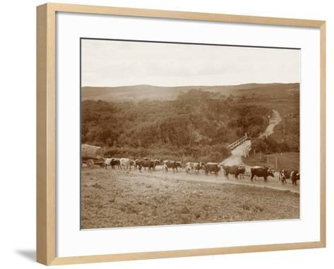Bullock Team with a Log--Framed Art Print