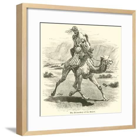 The Dromedary of the Desert--Framed Art Print