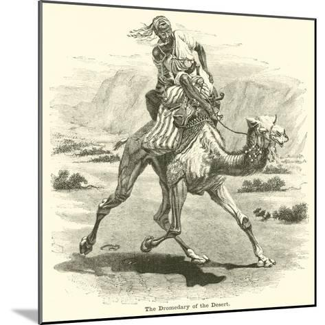 The Dromedary of the Desert--Mounted Giclee Print