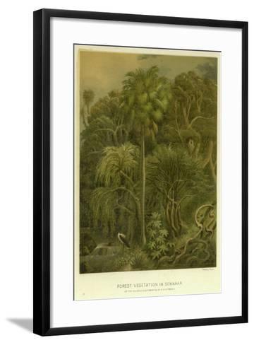 Forest Vegetation in Sennaar--Framed Art Print