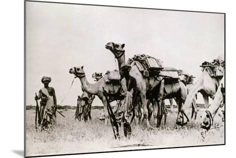 Somali Troops--Mounted Photographic Print
