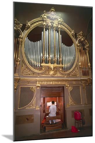 Organ Player--Mounted Photographic Print
