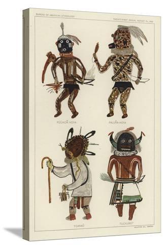 Puukon Hoya, Paluna Hoya, Tcanau, Tuckubot--Stretched Canvas Print