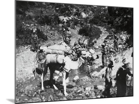 A Unit of Riflemen in Ogaden--Mounted Photographic Print