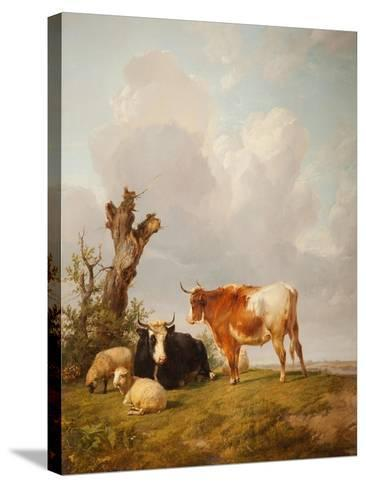 View in Stour Valley with Two Cows-Thomas Sidney Cooper-Stretched Canvas Print