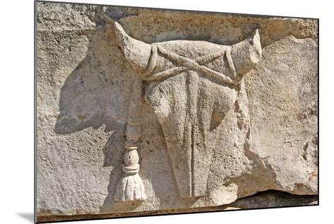 Carved Ox Skull or Bucranium, Letoon, Turkey--Mounted Photographic Print
