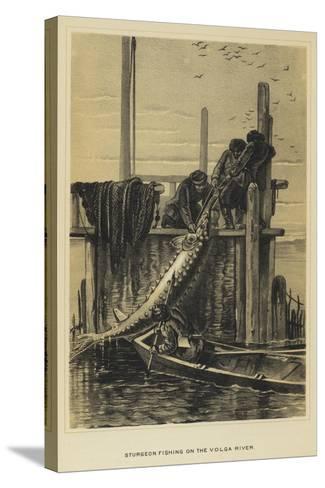 Sturgeon Fishing on the Volga River--Stretched Canvas Print