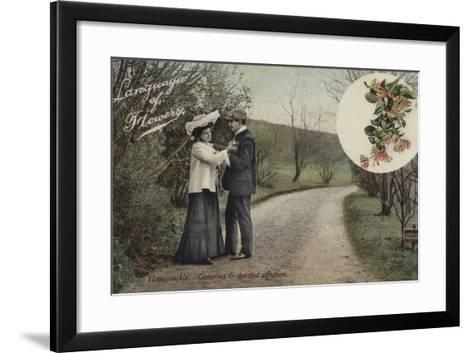 Honeysuckle - Generous and Devoted Affection--Framed Art Print