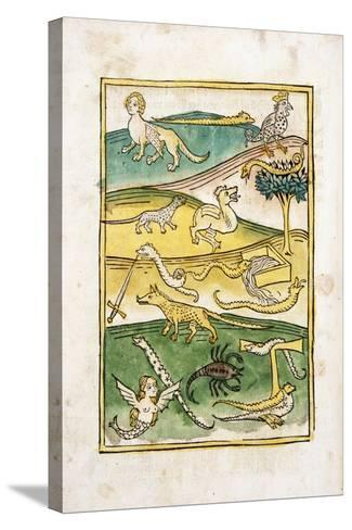 Monsters and Snakes in a Landscape, 1478--Stretched Canvas Print