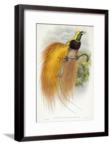 Paradisea Augustae Victoriae, 1891-1898-William Hart-Framed Art Print