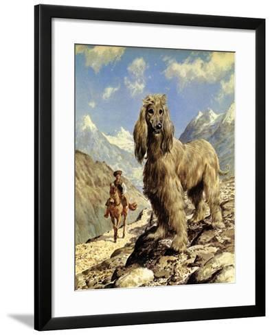 Afghan Hound-Eric Tansley-Framed Art Print