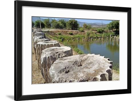 The Submerged Ruins of Letoon, Turkey--Framed Art Print