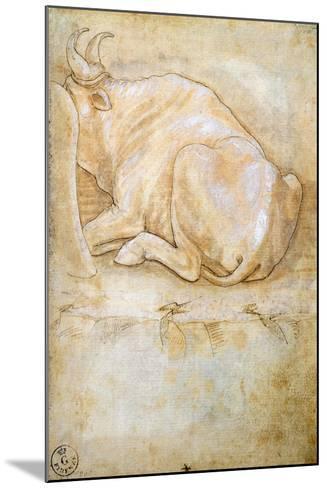 Animal Studies: Oxen--Mounted Giclee Print