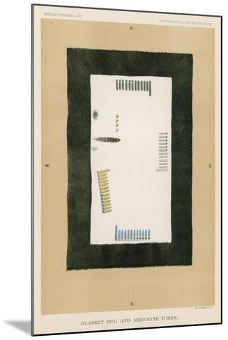 Blanket Rug and Medicine Tubes--Mounted Giclee Print