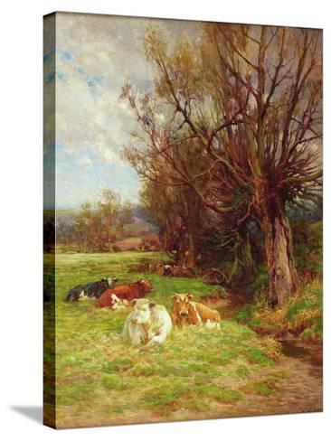 Cattle Grazing-Charles James Adams-Stretched Canvas Print