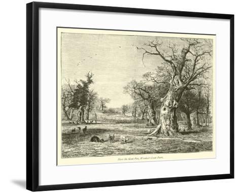Near the Goat Pen, Windsor Great Park--Framed Art Print