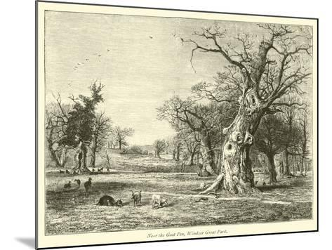 Near the Goat Pen, Windsor Great Park--Mounted Giclee Print