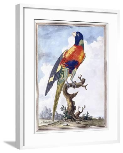 Plate VII-Peter Brown-Framed Art Print