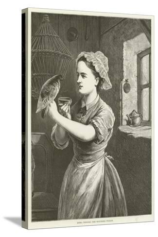 Emma Tending the Wounded Pigeon--Stretched Canvas Print