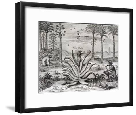 Athanasius Kircher-Athanasius Kircher-Framed Art Print