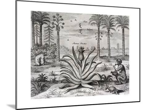 Athanasius Kircher-Athanasius Kircher-Mounted Giclee Print
